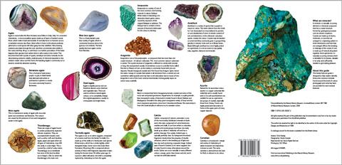 Museum Of Natural History Brochure